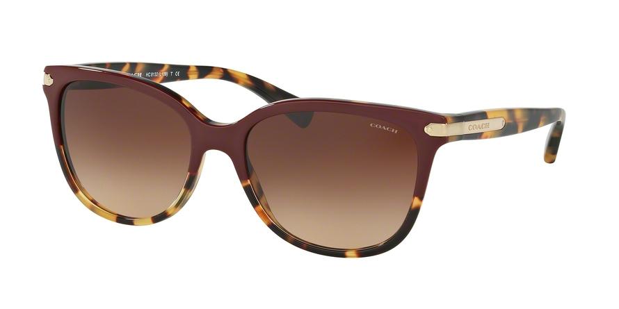 COACH HC8132 L109 style-color 543713 Burgundy Tortoise / Tortoise