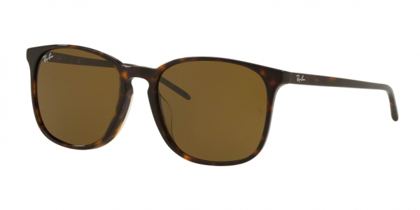 RAY-BAN RB4387F ASIAN FIT