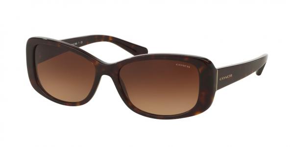COACH HC8168 L156 style-color 512013 Dark Tortoise / brown gradient Lens